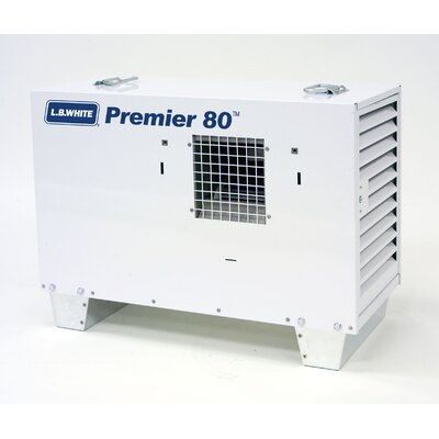 Premier Compact Natural Gas Space Heater