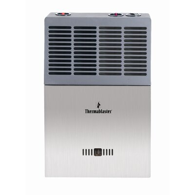 Thermablaster 10 000 Btu Vent Free Gas Blue Flame Wall