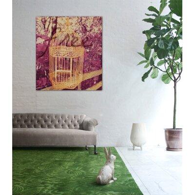 "One Bella Casa ""Free I"" Graphic Art on Canvas"