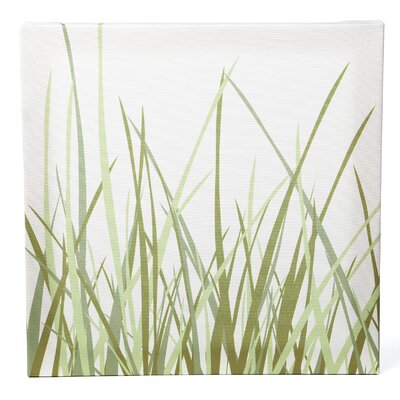 Nourish Summer Grass Stretched Graphic Art on Canvas