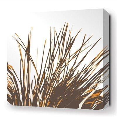 Inhabit Botanicals Thatch Stretched Graphic Art on Canvas