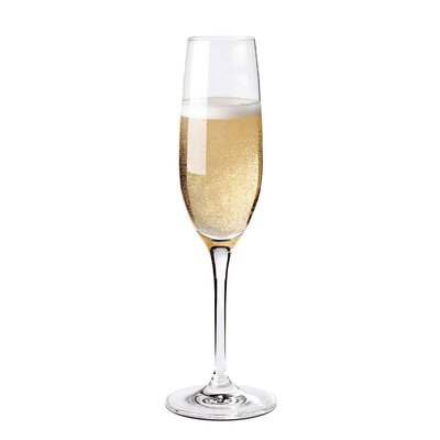 Wine Enthusiast Fusion Classic Champagne Flute (Set of 4)