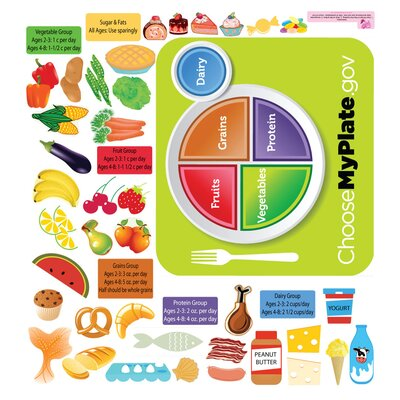 Mona Melisa Designs Peel and Learn Food Groups Wall Stickers