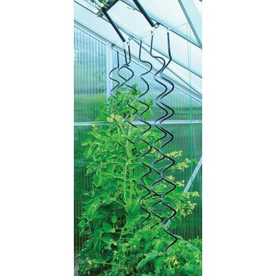 Juliana Greenhouses Greenhouse Plant Spiral (Set of 3)