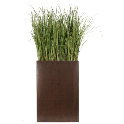 Distinctive Designs Tall Silk Grass in Plant Divider