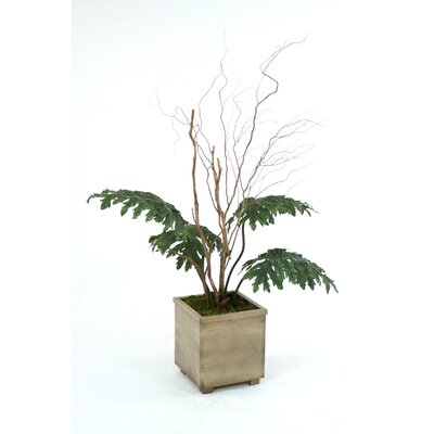 Distinctive Designs Arrangement in Square Contempo Planter