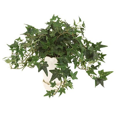 <strong>Distinctive Designs</strong> Silk Mini Foliage Assortment Floor Plant in Pot