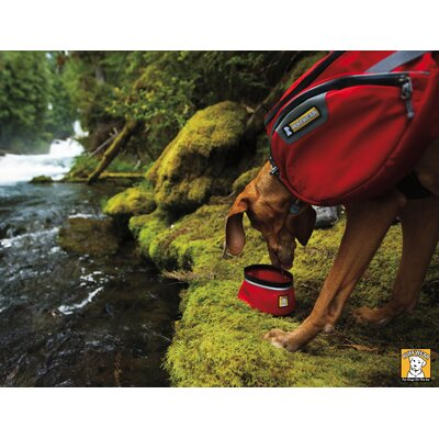 RuffWear Palisades Pack™ Dog Backpack