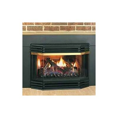 Napoleon Fireplace Bay Front Assembly with Pull Screen
