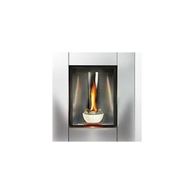 Napoleon Direct Tureen Direct Vent Gas Fireplace