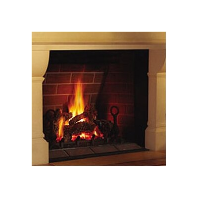 napoleon direct madison direct vent gas fireplace