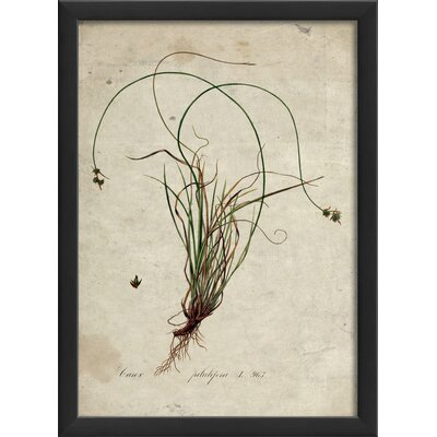 botanical wall art wayfair