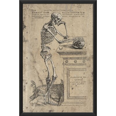 Blueprint Artwork Humanis Corporis Ossium Cae Framed Graphic Art