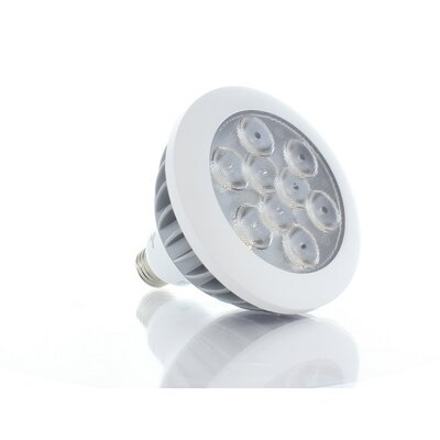 17W Daylight LED PAR38 Bulb