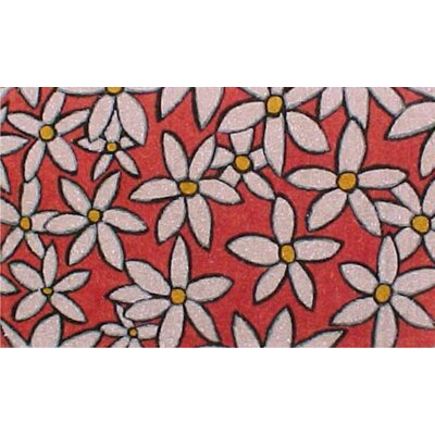 Home & More Daises Doormat