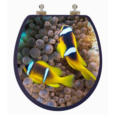 Topseat 3D Ocean Series Two Clownfish Round Toilet Seat