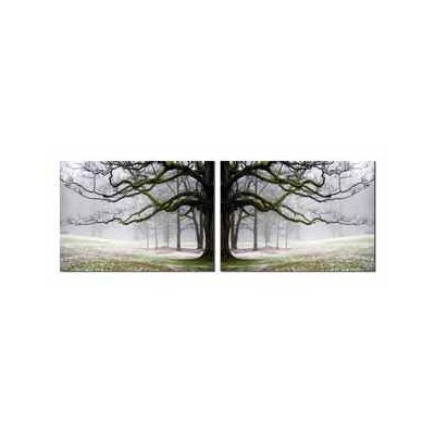 Gray Tree 2 Piece Photographic Print Set