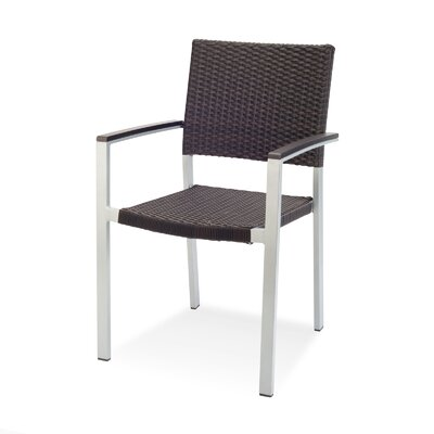 Source Contract Fiji Dining Arm Chair