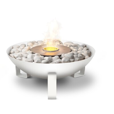 EcoSmart Fire Dish Fire Pit