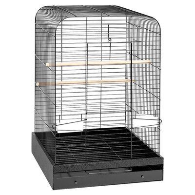 Prevue Hendryx Madison  Bird Cage