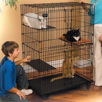 Midwest Homes For Pets Cat Cage/Playpen & Reviews | Wayfair