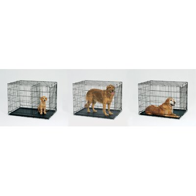 Midwest Homes For Pets Life Stages Fold & Carry Single-Door Dog Crate