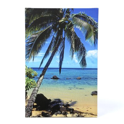 Kathy Yates ''Beautiful Animi Beach'' Canvas Art