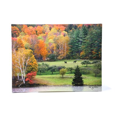 Art Wall ''Killington Vermont'' by George Zucconi Photographic Print on Canvas