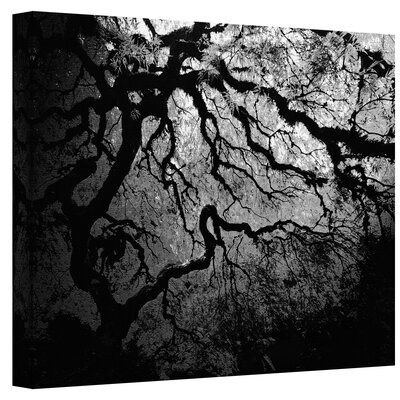 Art Wall John Black ''Ying and Yang Tree'' Canvas Art