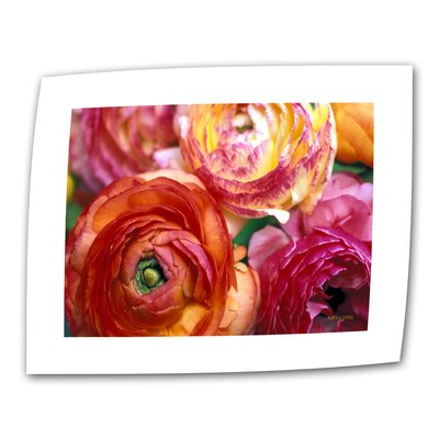 "Art Wall Kathy Yates ""Ranunculus Close-up"" Canvas Wall Art"