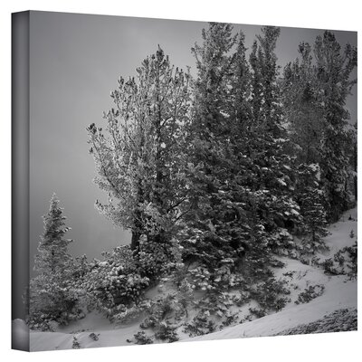 Mark Ross ''10000 Feet of Silence'' Canvas Art