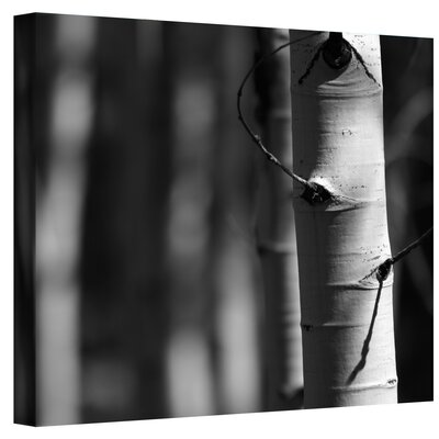 Mark Ross ''A Way Out'' Canvas Art