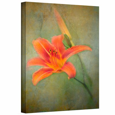 Art Wall David Liam Kyle 'Reach for Life' Gallery-Wrapped Canvas Wall Art