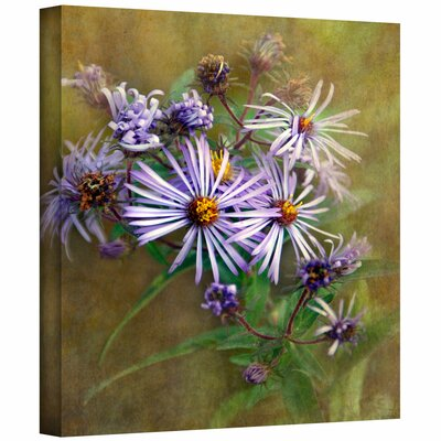 Art Wall 'Flowers in Focus VI' by David Liam Kyle Photographic Print on Canvas