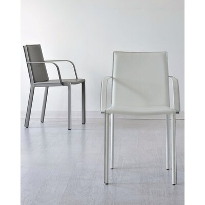 AirNova Alexia Dining Arm Chair