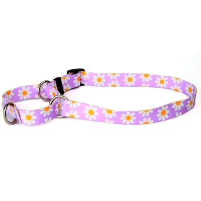 Yellow Dog Design Lavendar Daisy Martingale Collar