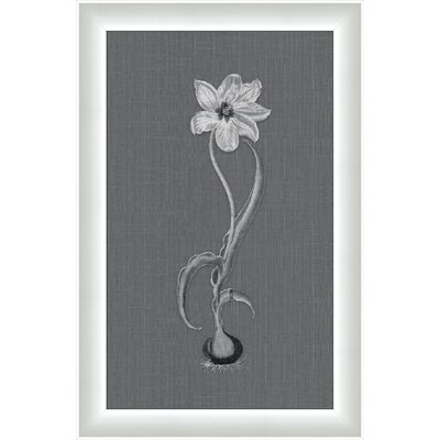 Melissa Van Hise White Flora on Gray Linen lll Wall Art