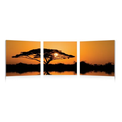 Baxton Studio Savannah Sunset Mounted 3 Piece Photographic Print on Canvas Set