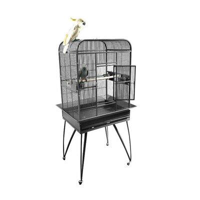 Small Play Top Bird Cage with Removable Base
