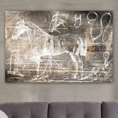 Oliver Gal ''Horse Breaking Guide'' Graphic Art on Canvas