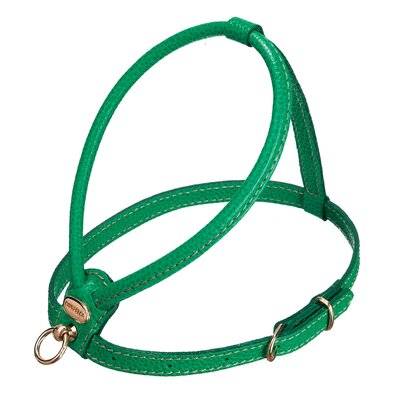 PetEgo Fashion Leather Dog Harness in Green