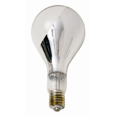 Nuevo Big Base Side Chrome Light Bulb
