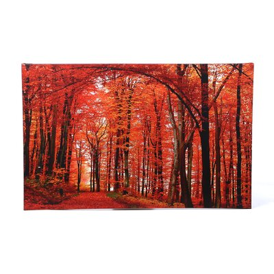 "Trademark Fine Art The Red Way by Philippe Sainte-Laudy, Canvas Art - 30"" x 47"""