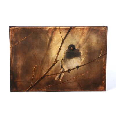 <strong>Trademark Fine Art</strong> 'Backlit Birdie Being Buffeted' Canvas Art