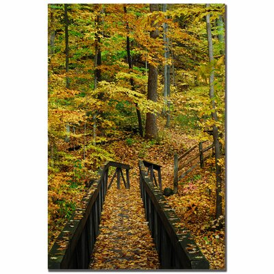 "Trademark Fine Art ""Fall Bridge"" by Kurt Shaffer Photographic Print on Canvas"