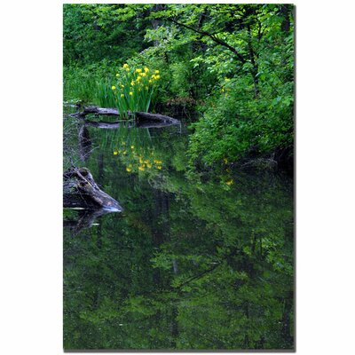 "Trademark Fine Art Wild Iris Reflections by Kurt Shaffer, Canvas Art - 24"" x 16"""