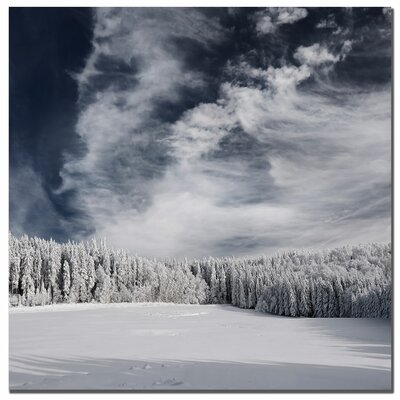 "Trademark Fine Art Snowy Sky by Philippe Sainte-Laudy, Canvas Art - 24"" x 24"""