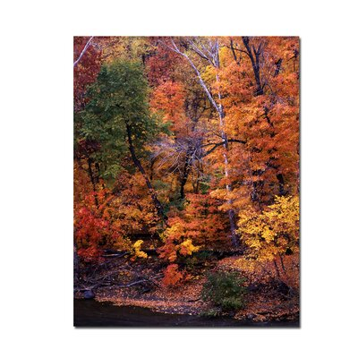 "Trademark Fine Art I Love Autumn by Kurt Shaffer, Canvas Art - 24"" x 18"""