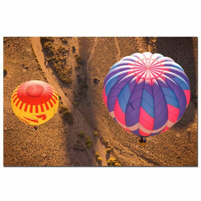 Trademark Fine Art Balloon Duet by Aianaon Photographic Print on Canvas