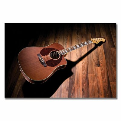 Trademark Fine Art Acoustic Photographic Print on Canvas
